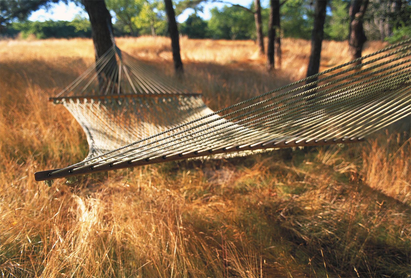 NANTUCKET_HAMMOCK.jpg