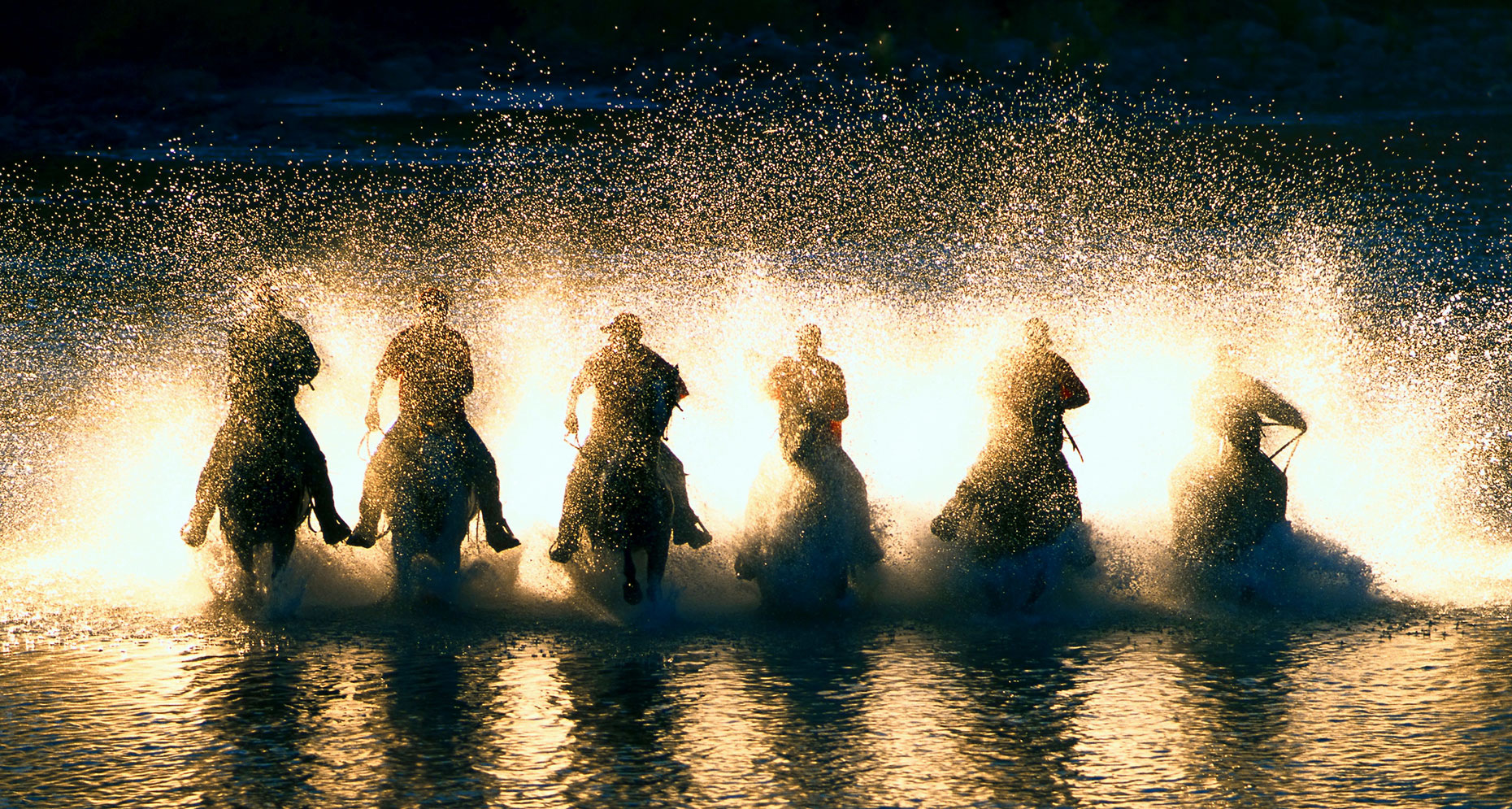 SIX_HORSES_IN_RIVER.www
